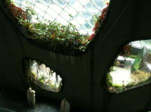 Singapore Treetops Porthole