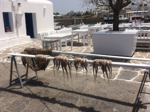Naussa - mini harbour - drying the catch.