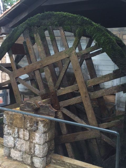 Water wheel driving lamb spit